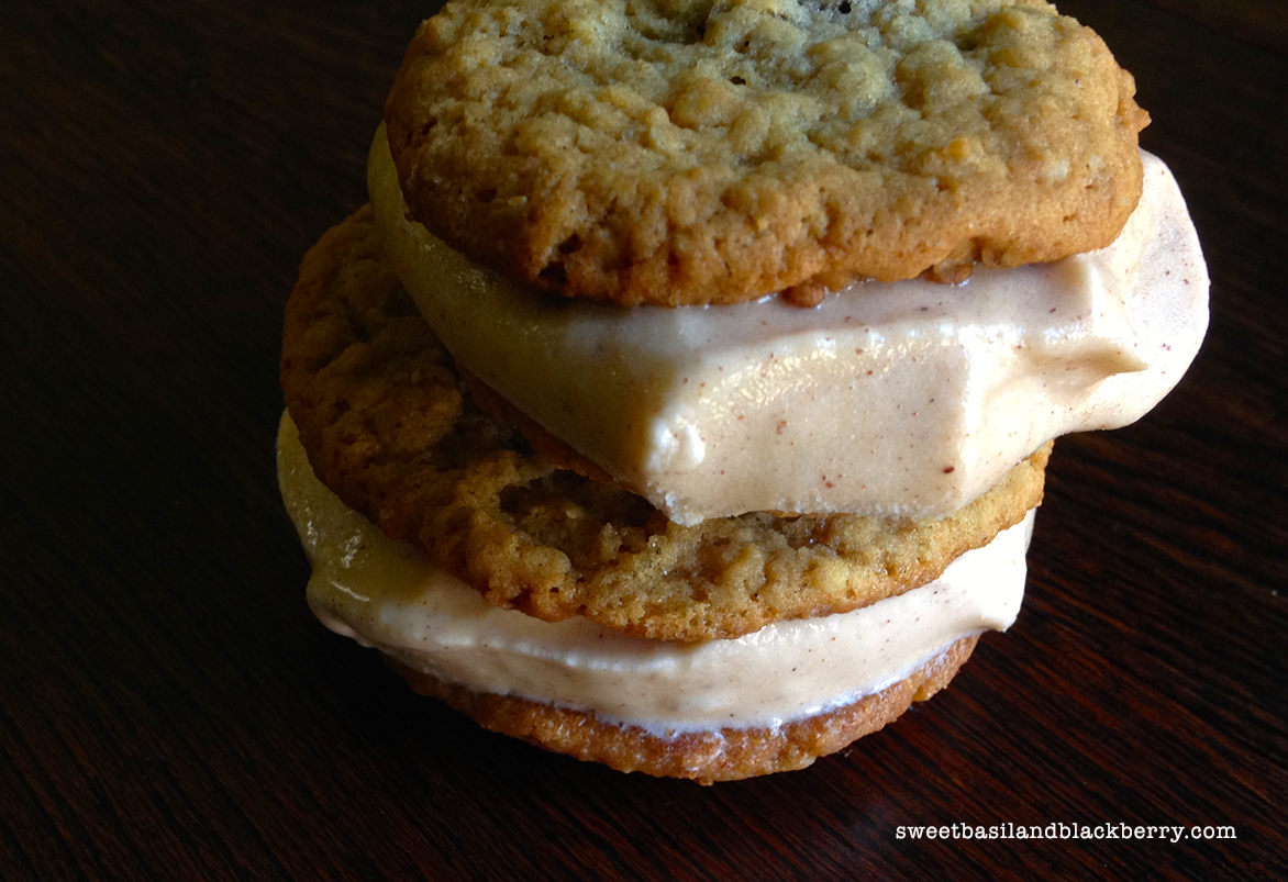 ice cream sandwiches #5